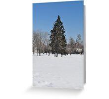 Christmas tree to the stars Greeting Card