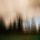 It's Raining by Angelika  Vogel