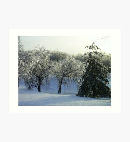 Icey Storm Art Print