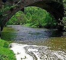 The River Dove Beneath Coldwall Bridge  by Rod Johnson