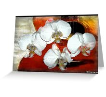 Serenade in the Key of Orchid Greeting Card