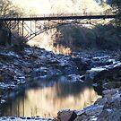 The Bridge Over The Yuba by NancyC