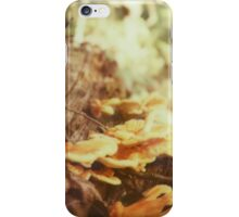 Wild shrooms iPhone Case/Skin