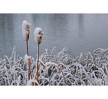 Snow Rushes Photographic Print