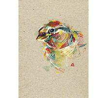 Birdie IV Photographic Print