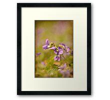 Playful Wild Violets Framed Print