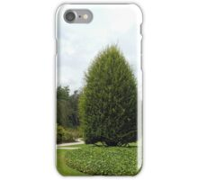 Beautiful Trees iPhone Case/Skin