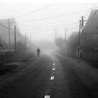 Morning Fog by ksegev