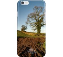 Frosty Mid Devon morning iPhone Case/Skin