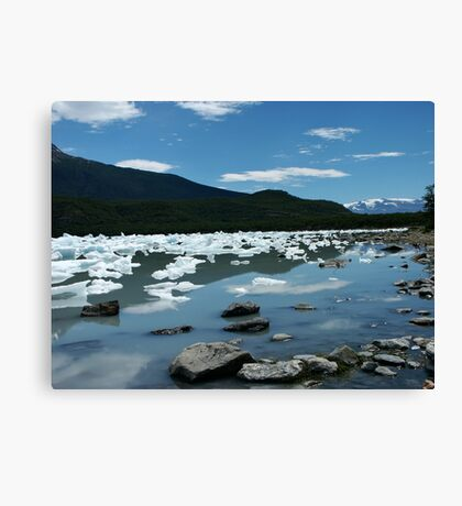 Patagonia, icebergs at Onelli bay Canvas Print