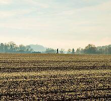Winter Scene by Mark Bangert