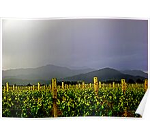 Storm over the  Richmond Ranges Poster