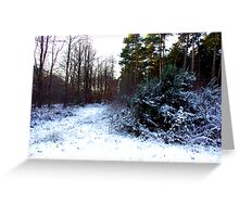 Winter Contrast Greeting Card