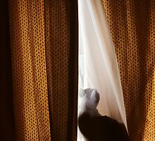 Worthing through the Curtains by WebVivant