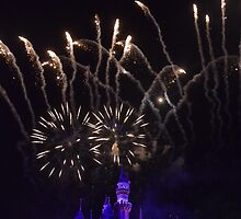 Fireworks at Disneyland by PicsByChris