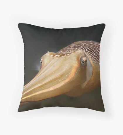 Clifton Cuttle Throw Pillow