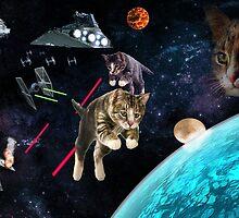 Catsv.Imperials by PlooKon09