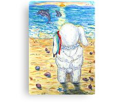 Pooky Dolphin Watching at Sunset Canvas Print