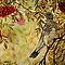 """Fieldfare"" - Oil Painting by Avril Brand"