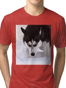 If Looks Could Kill - Black and White Husky Tri-blend T-Shirt