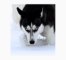 If Looks Could Kill - Black and White Husky T-Shirt