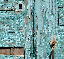 Flaky Door by duncananderson