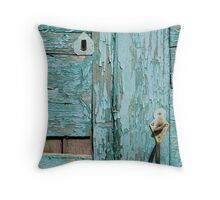 Flaky Door Throw Pillow