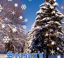 Christmas Card - Season's Greetings A Collaboration With Cherylc1 by reflector