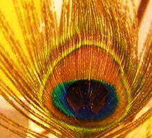 plummage by Coloursofnature