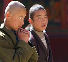 Novice monk by David Reid