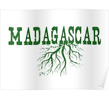 Madagascar Roots Poster