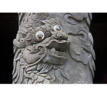Goofy Eyed Dragon Photographic Print