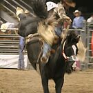 bronco rider uno by aasp