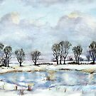 Winter at Lamesley by Colin Cartwright