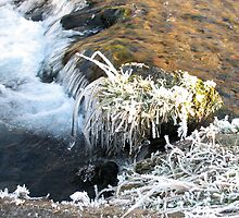 Icy Stream in Peebles, Scottish Borders by rosie320d
