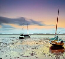 Stuck in the Mud - Redland Bay Qld Australia by Beth  Wode