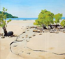 beach in oz by dave reynolds
