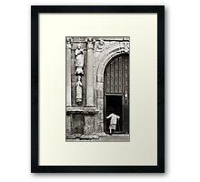 Seeking comfort? Framed Print