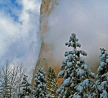 WINTER STORM, EL CAPITAN by Chuck Wickham