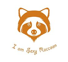 I am Sexy Raccoon by StockVector