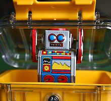 Surprise! by littlelostrobot