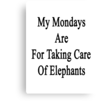 My Mondays Are For Taking Care Of Elephants  Canvas Print