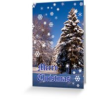 Merry Christmas- a collaboration with Reflector Greeting Card