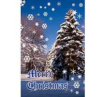 Merry Christmas- a collaboration with Reflector Photographic Print