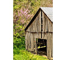 Springtime In Kentucky Photographic Print