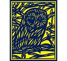 Loperfido Owl Yellow Blue Photographic Print