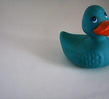 Duck Solo by Jen Millard