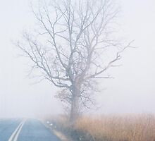 Christ in My Yellow Line in the Fog by clizzio