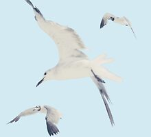 1989 Seagulls by hayleyidk