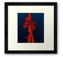 The short-tempered rope Framed Print